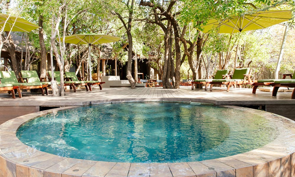 pilanesberg-game-reserve-Tambuti-Private-Lodge-013.jpg