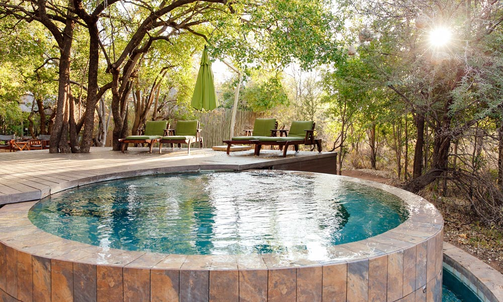 pilanesberg-game-reserve-Tambuti-Private-Lodge-017.jpg