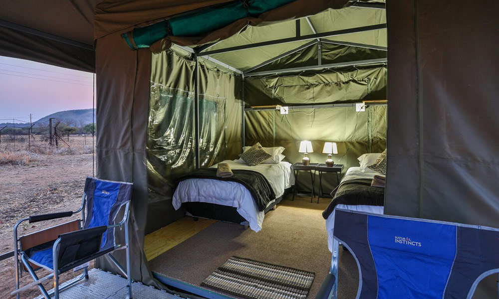 Tented Adventures at the Pilanesberg