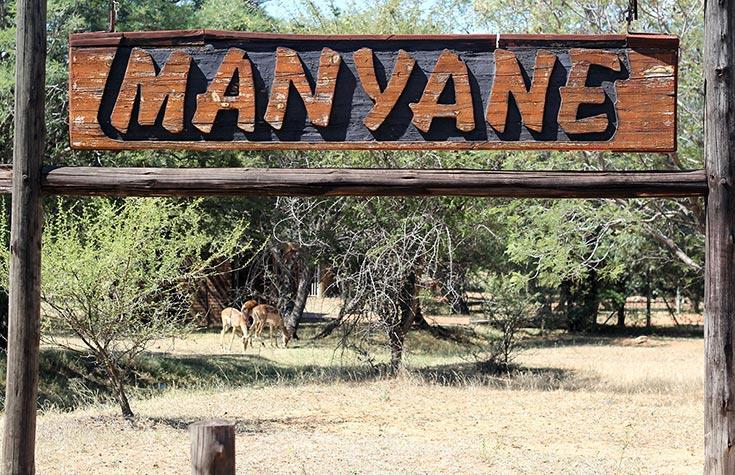 Manyane1.jpg